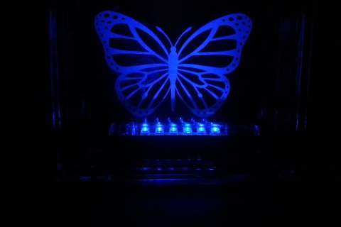 LED floating butterfly