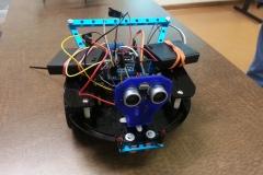 Robin's bot